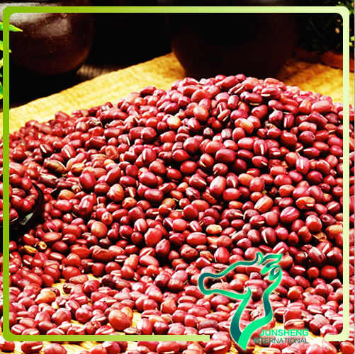 Azuki Beans from China, Grade One, Low Price For Export ,2013 New Crop,Small Red Beans
