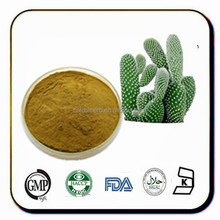 Prickly pear,opuntia care extract powder