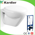 Popular design double flush toilet, luxury toilet seat