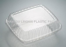 Clear Disposable Plastic Food Grade Plastic Container