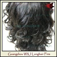 Virgin Brazilian Human Long Curly Hair Ladies Wig