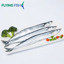 Competitive prices wholesale frozen pacific saury for bait