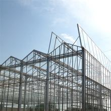 Glass Horticultural Greenhouse for flower growing