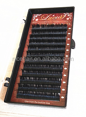Eyelash extension / New Mink Lashes/ Beauty Cat Eyelashes in Korea Manufacturer