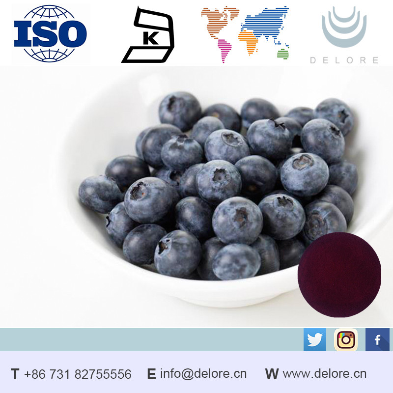 Natural Anthocyanidin 25% Vaccinium myrtillus L Chinese Bilberry Extract fruits containing vitamin d