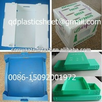 PP Corrugated Plastic Container for Fruits and Vegetables