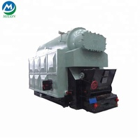 Hot sale 100kw coal fired steam generator boiler for machinery