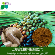 factory supply natural saw palmetto fruit extract/saw palmetto plant extract