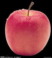 High quality red Fuji apple