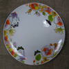 European market hot sale porcelain dinner plate noodle plate with nice decal