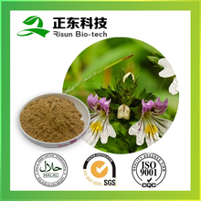 Kosher Certified Eyebright Extract 10:1 Powder