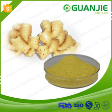 100% Organic Ginger Extract Powder(Water Soluble)6-Gingerol,Gingerol