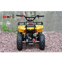 500W, 800W Battery Powered Mini Electric ATV Child Electric Quad 36V