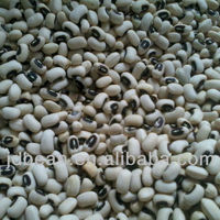 2016 New Crop White Cowpea Black