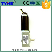 New product China supplier 12v dc worm motor with gear reduction