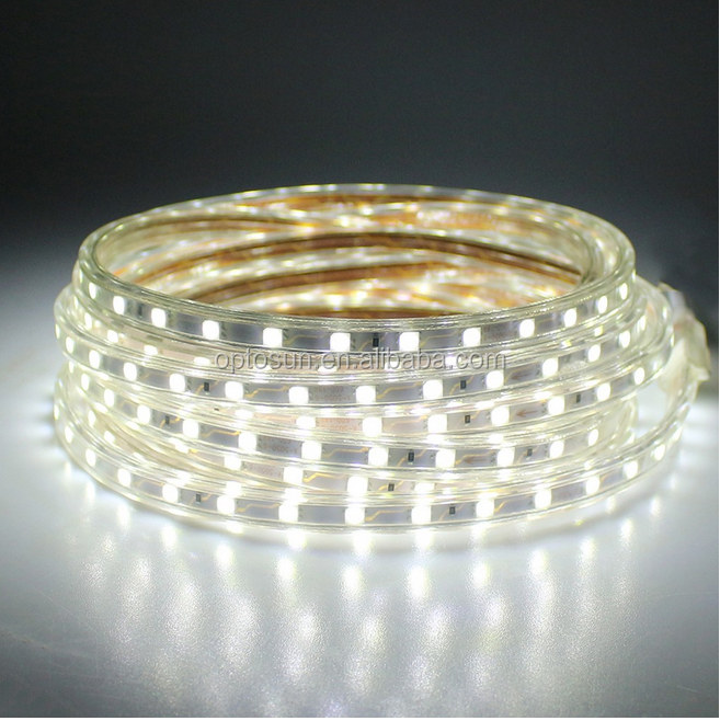 12V 24V 110V 220V SMD 5050 3528 3014 5630 ip65 flexible 220v led strip light cool white