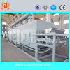 Famous China supplier granules food dryer machine