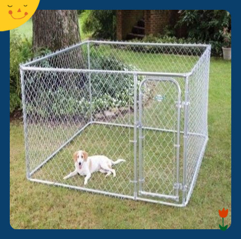 Widely used superior quality wire mesh chain link dog kennels