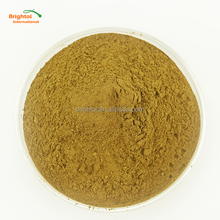 Natural Pure Dendrobium Extract Powder 10:1