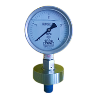 Y-150B/ML/316L diaphragm seal pressure gauge