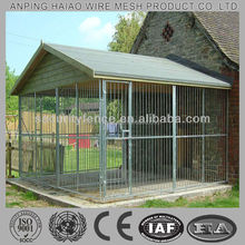 Hot sale high quality cheap decorative dog fences( 10 year factory with ISO & CE)