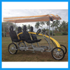 Self-Sightseeing Quadricycle for Family