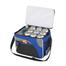 Whole food delivery insulated cooler bag for frozen food delivery cooler bag