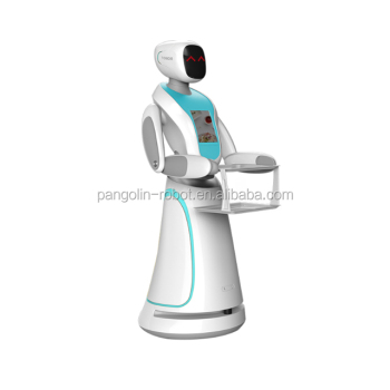 Hotel robotic waiter distributor use low price human like personalized robot