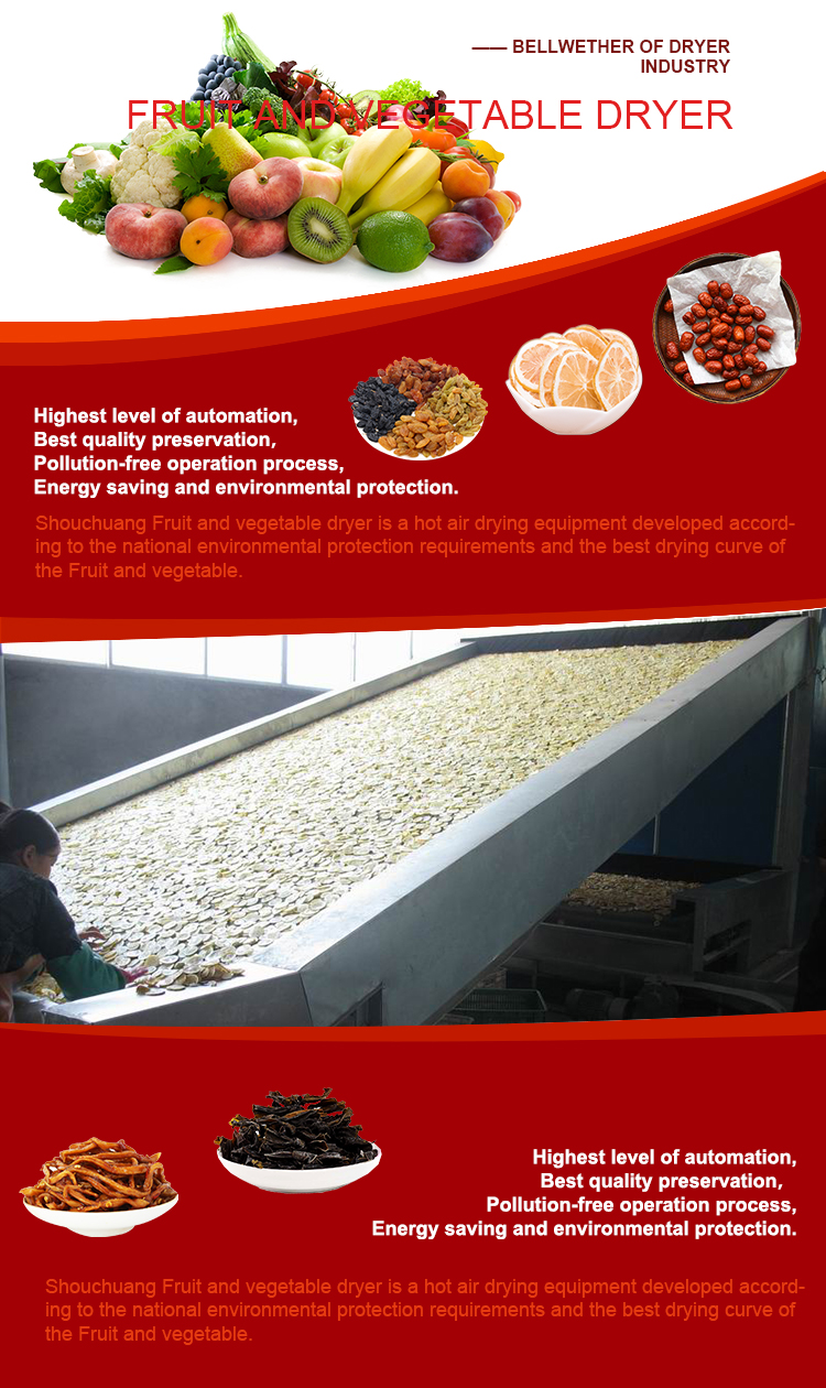 high efficiency Chinese supplier dried fruit machine