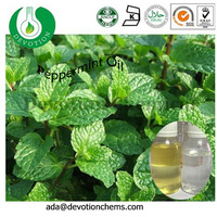 China Manufacturer Production Bulk Free Sample Chinese Peppermint Oil