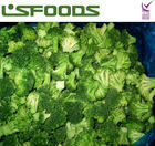 2013 Chinese New Crop Frozen IQF Broccoli