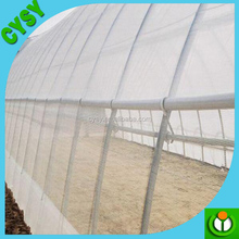 Cricket insect net mash protect your vegetable