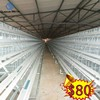 a type new design layer chicken cage for zambia