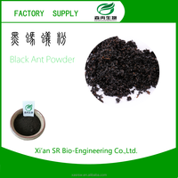 SR Factory Supply Black Ants Extract In Health And Medical/Penis Strong Medicine/Sex Medicine Names
