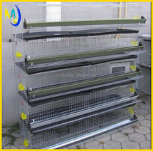 Poultry equipments Bird cages ,250 quails cage for sale