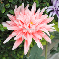 HOT shopping mall decoration artificial silk dahlia flowers