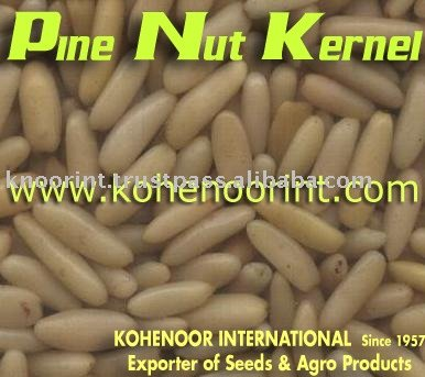 Pine Nut Kernels Exporter Kohinoor International