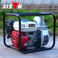 BISON CHINA TaiZhou camping air cooled direct injection 5.5hp honda gasoline water pump