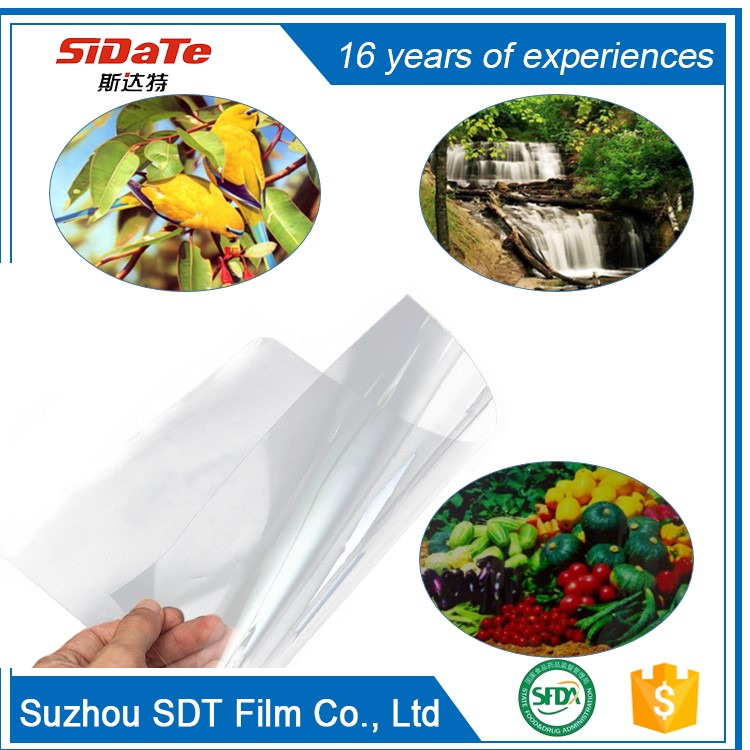 17 width instant dry clear PET Waterproof positive film roll
