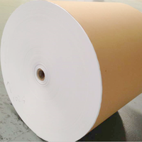 offset paper roll 100% wood pulp book printing paper