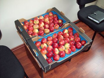early growing fresh nectarine - shipment by beg May 2012-