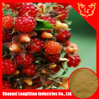 Herbal Tea Material Guarana Extract Powder