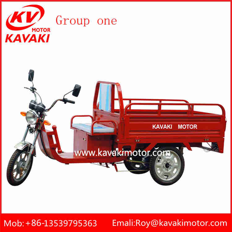 Aisa Popular Good Quality Three Wheel Elecric Cargp 1000W Adult Tricycle