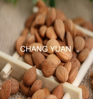 Bulk dried sweet apricot kernels in apricot seeds and apricot nuts in shell