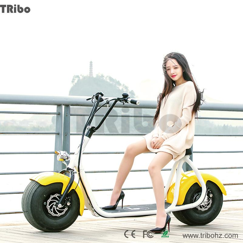 2016 hot selling Most popular halley design Stable motorcycle -shaped electric bicycle