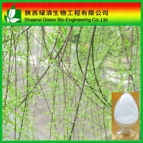 High Quality Plant Extract White Willow Bark Extract/salicin 98%/strengthen Stomach / High Quality Methol Solvents/Salicin