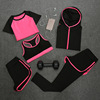 /product-detail/summer-slimming-quick-dry-short-sleeved-casual-running-sportswear-ladies-five-piece-fitness-yoga-suits-60762683491.html