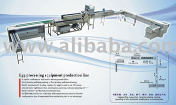 Egg processing Equipments