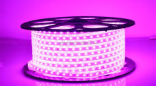 IP65 IP67 Soft silicone tube waterproof NW CRI80 60led 110v 220v SMD335 Side view led strip special color 16-18lm/leds
