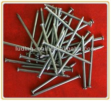 best price q235 polished common nail use in wood nail